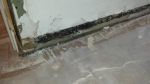 Mold Behind Baseboard